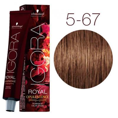 Крем-краска Schwarzkopf professional Igora Royal Opulescence 5-67 Светлый коричневый шоколадный медный 60 мл: фото